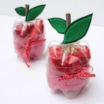 Feito de garrafa pet no formato de maça. Pode ser usado para a convidada levar de lembrancinha.