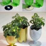 Essa garrafa com cd, após pintada pode ser usada como um enfeite de mesa com flor, ou com balas ou petiscos em cima da mesa.